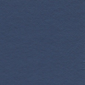 Blue 301